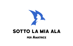 associazione amatrice cinema webdesign marketing pesaro danielegalvani.it